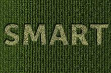 """La ruralité veut ses """"smart campagnes"""""""
